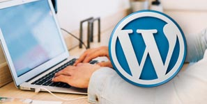 Diseño web WordPress