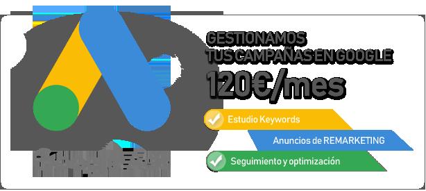 Gestión de Campañas en Google