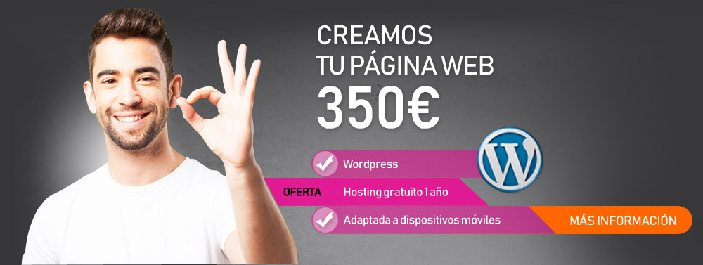 Pagina web wordpress 350€